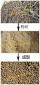 木屑秸秆颗粒机/秸秆颗粒机/秸秆压缩颗粒机